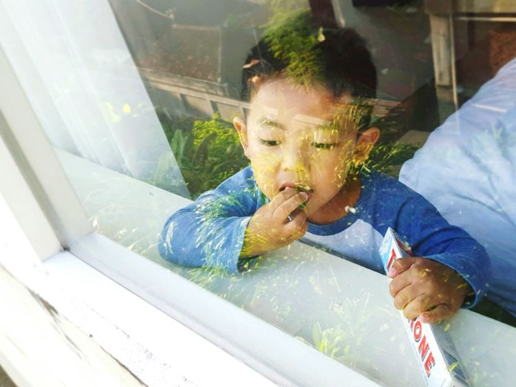 Taste yummyy Babies Chocolate Toblerone Window Reflections Eating Eating Chocolate Baby Boy Asian Baby  Whiteshades