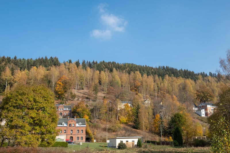 Trees and houses against sky during autumn