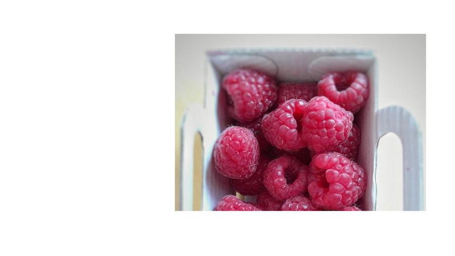 Fruit White Background