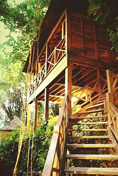 Taking Photos Caribbean Caribbean Life Architecture Jamaica Portland Jamaica Places I Love Relaxing Vacay Treehouse
