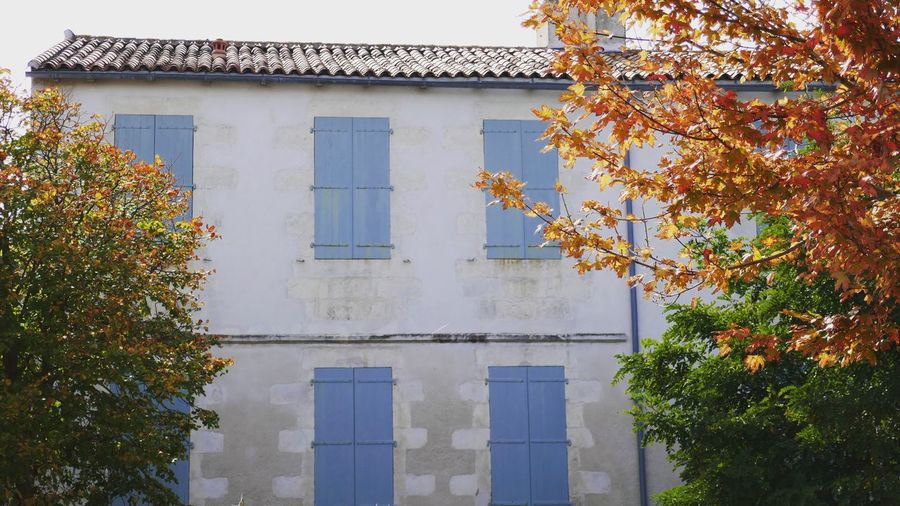 Architecture Building Exterior Autumn Tree Leaf Outdoors No People Nature