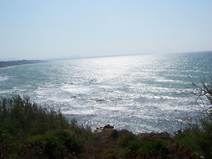 Sea Nature Day