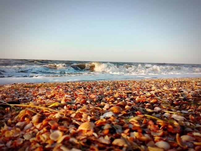 43 Golden Moments Золотая галька Золотое лето Азовское море :)