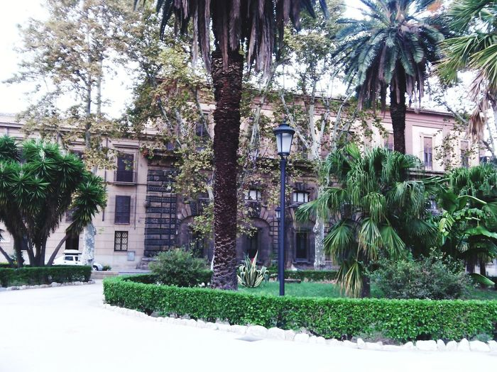 Piazza Indipendenza Palermo Palermo Shooting Streets Historical Monuments Centro Historico First Eyeem Photo Beautiful Day