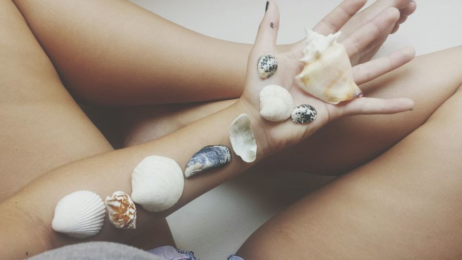 Ocean Sea Shells Ocean Vibes Arm Human Body