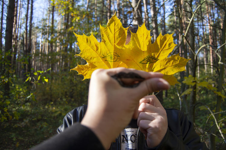 One Person Yellow Human Hand Leisure Activity Hand Real People Human Body Part Lifestyles Holding Plant Forest Nature Headshot Autumn Unrecognizable Person Beauty In Nature Outdoors Body Part WoodLand Obscured Face Finger Change Creativity Art Focus On Background