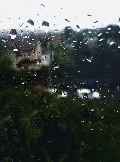 Rain Storm June Taking Photos Relaxing