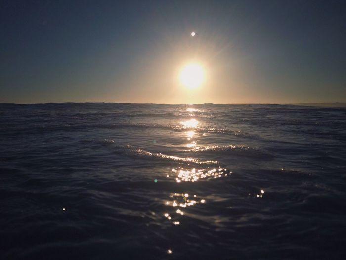 Surf's Up Ocean Immersion Surfing Wave Blue Water Salty Pacific Ocean Coronado Beach Photography San Diego Vscocam EyeEm Best Shots EyeEm Nature Lover EyeEm Best Shots - Landscape IPhoneography