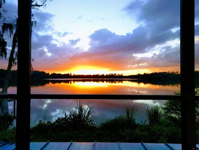 Perfect Sunset! Sunset Gainesville BivensArm Lakeview Gatorland Gator Forest BeachHouse Greenery Green Water Sun Sky Blue Nature Lake Outdoors Day Beauty In Nature Tranquil Scene
