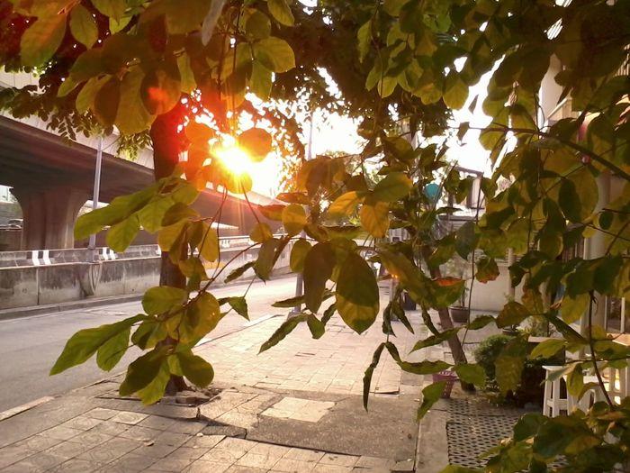 How's The Weather Today? Walking Around 'enjoy The Sun Enjoying The View Taking Photos Bangkok,Thailand(Siam)