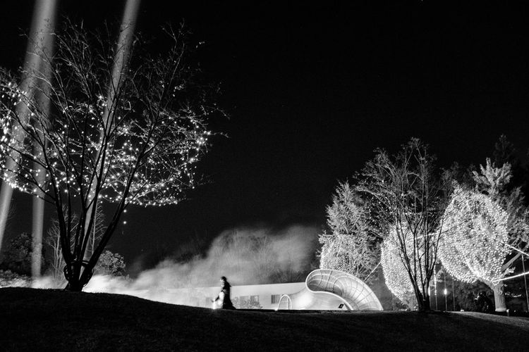 Arts Culture And Entertainment Celebration Full Length Illuminated Leisure Activity Lifestyles Long Exposure Men Motion Nature Night Outdoors People Real People Sky Standing The Street Photographer - 2017 EyeEm Awards Tree Wire Wool Women