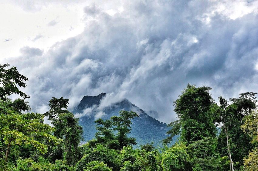 Nature Beauty In Nature Sky Cloud - Sky Forest Scenics Outdoors Power In Nature Thailand Travel Destinations Northern Thailand Tree Chiang Mai   Thailand Chiang Dao