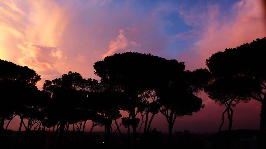 Home view, Rome Rome Italy Love Colors Pink Sunshine Home View sSky bBeauty In Nature sScenics