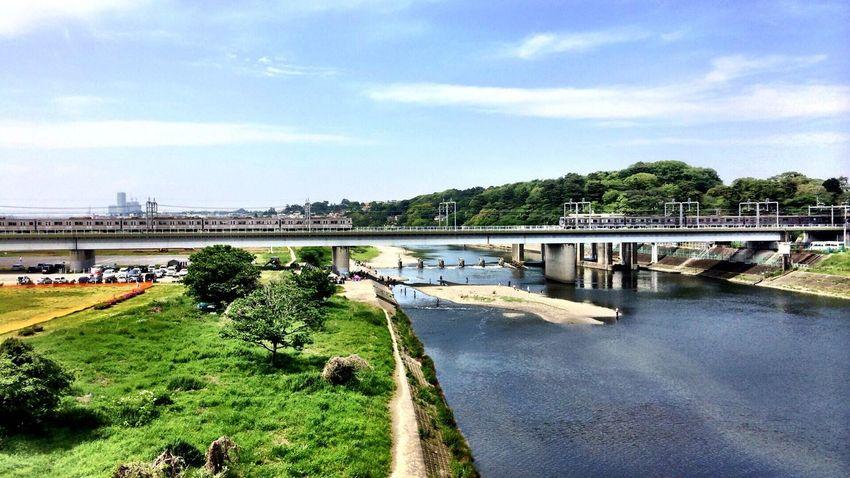 本日の多摩川