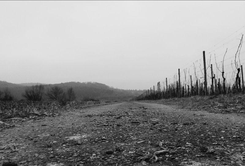 Dirty Way Southwest Germany Broggingen ♥ Taking Photos ❤ Photography♥