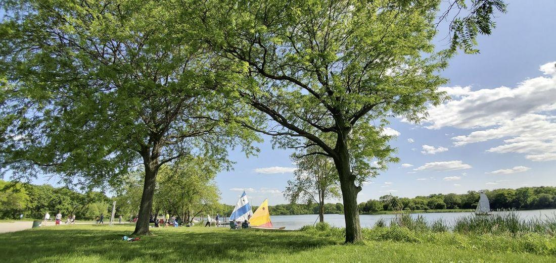 A peaceful summer scene at a lake shore with sailboats