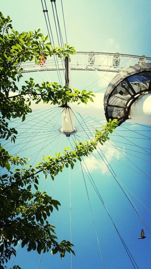 London London Eye Under The Trees Amazing View ??