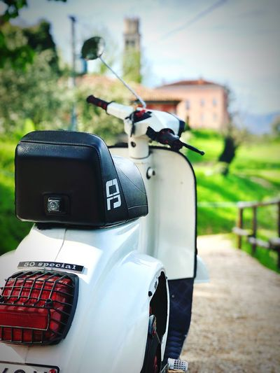 Chi vespa mangia le mele IPhone 8 Plus IPhoneography Spring Primavera 50 Special Vespa Day Focus On Foreground No People Nature Close-up Transportation Land Vehicle Outdoors EyeEmNewHere