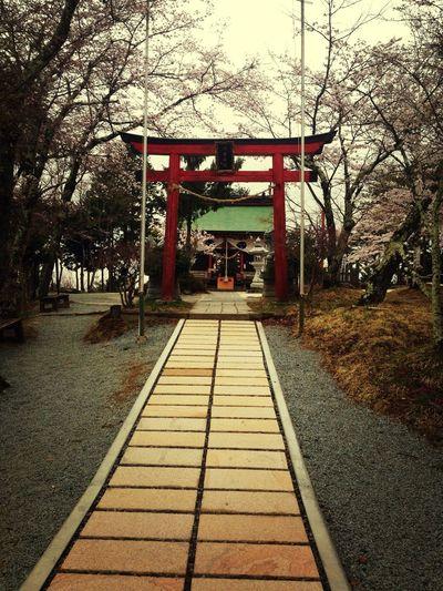 Shinto Shrine Silence