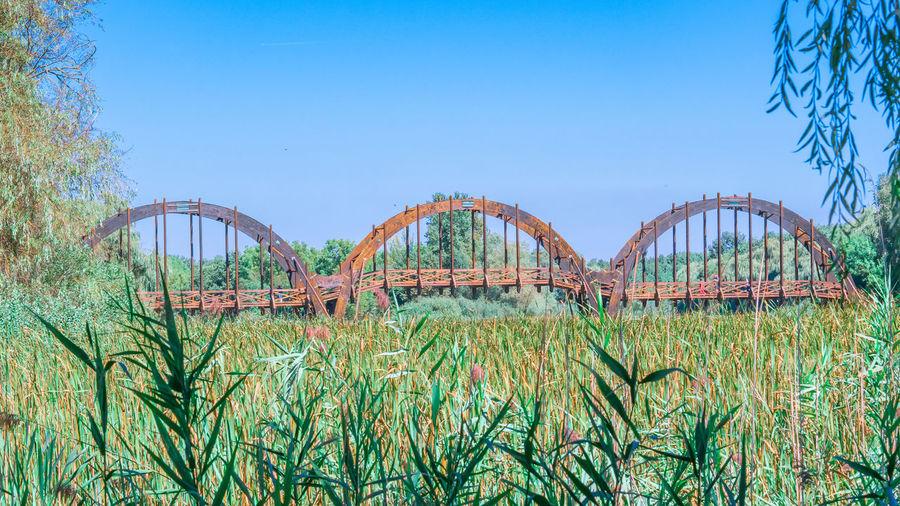 Arch bridge on field against clear blue sky