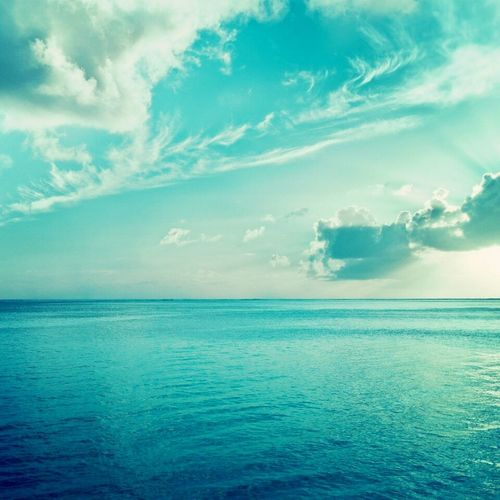 You know, live in the Caspian Sea is perfect)))) Sea Caspian Sea Nature Biutiful