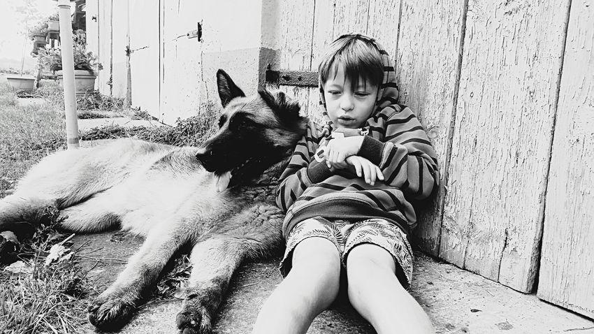Brothers in arms Brothersforlife Dogs Of EyeEm German Shepard Deutscher Schäferhund Littleboy Chill Mode Boy And Dog Animal Photography The Journalist Eyem 2016 Awards Pet Portraits