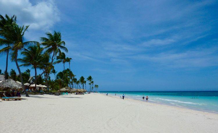 Beach Sand Sea Nature Sky Beauty In Nature Palm Tree