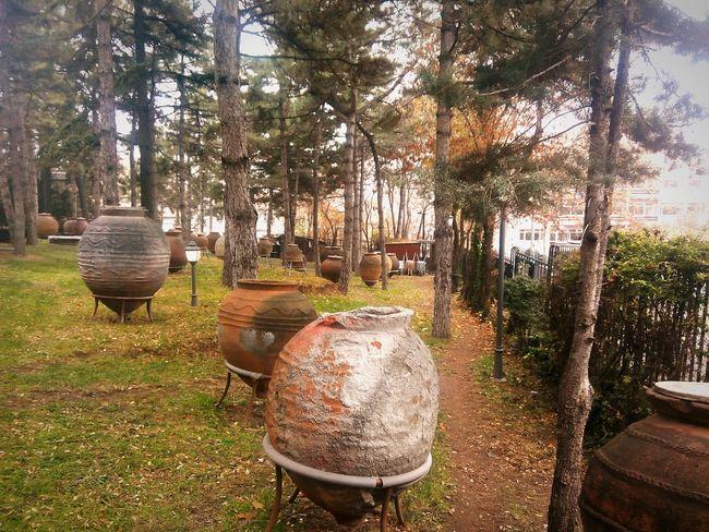 Life3filter Soguk Kış Müze Bahçesi Anadolumedeniyetlerimuzesi Bahce çömlek Tarih,sanat,art,geçmiş,gelecek,çömlek Historical Monuments Historic Garden Garden Photography