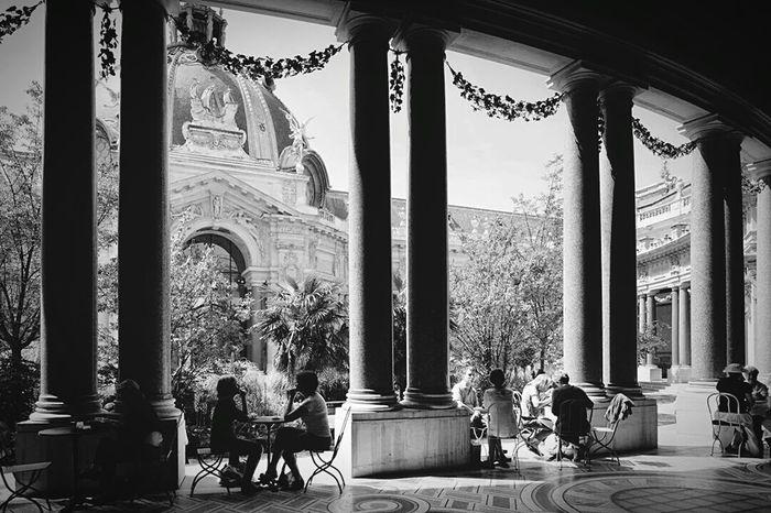 Le Petit Palais Paris Paris, France  Paris ❤ Paris Je T Aime Champselysées ChampsElyseesParis Champs-Élysées  Champs Elysees Petit Palais