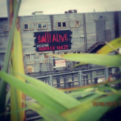 Saw Maze!:D <3 Sawmaze Saw Thorpepark Sawalivehorrormaze Horrormaze Likeit Loveit Goood Like Follow Muchlove