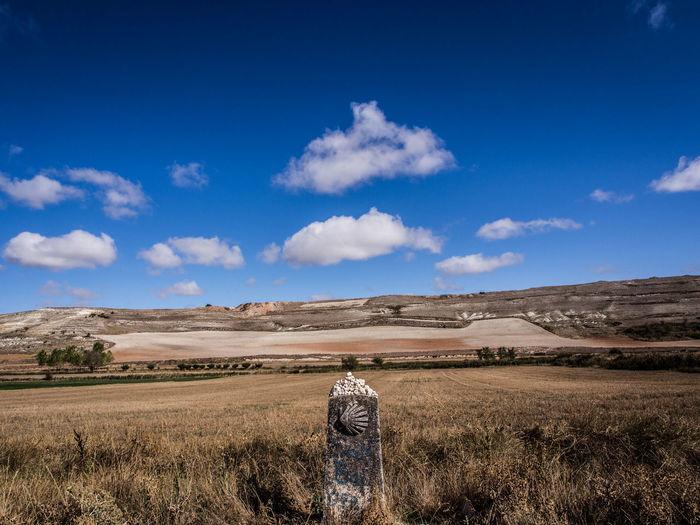 Rear view of landscape against blue sky