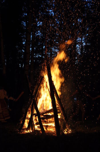 Bonfire at forest during night
