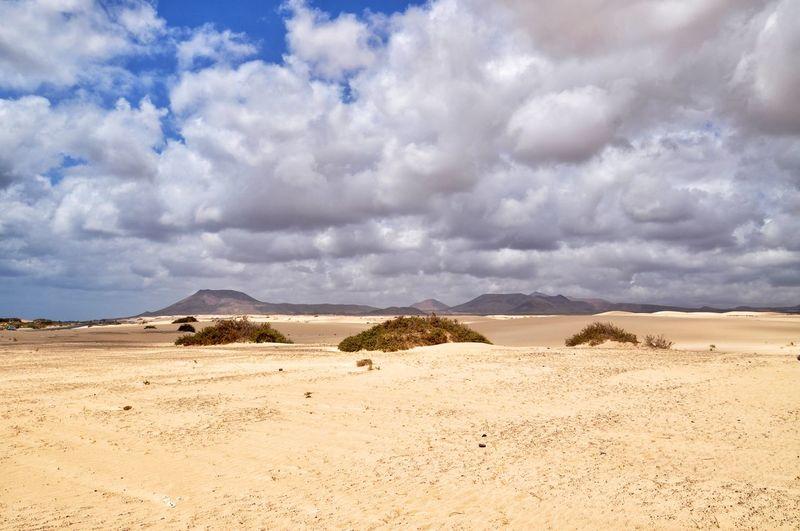 EyeEm Selects corralejo dunes on fuerteventura canary island in spain Desert Nature Sand Dune Sand Landscape Arid Climate Environment Cloud - Sky Beauty In Nature Travel Island Corralejo Fuerteventura Tranquil Scene Dramatic Sky Travel Destinations Scenics The Week On EyeEm