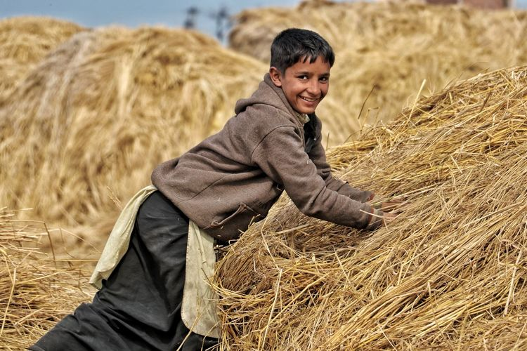 Boy Working Hard Farm Husk One Person Smiling Happiness Outdoors Portrait Field Mature Adult