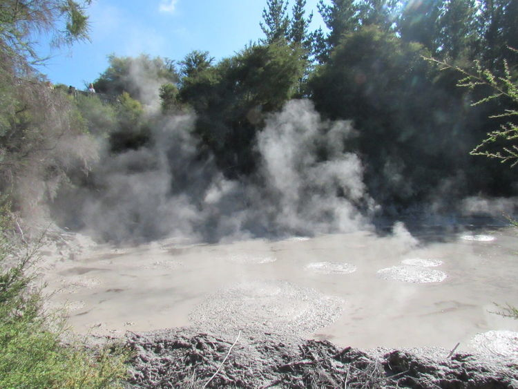 Mud Volcanoes New Zealand Rotorua  Wai O Tapu Water Tree Steam Hot Spring Mountain Sky Landscape Volcanic Landscape