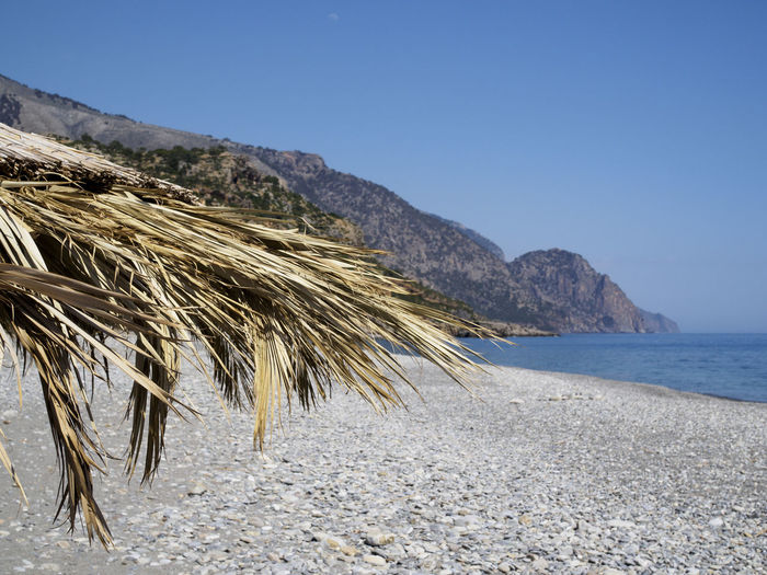 Sougia beach on the south side of Crete Beach Beach Umbrella Blue Clear Sky Mountain Nature Outdoors Pebble Beach Scenics Sea Tranquil Scene Tranquility Water