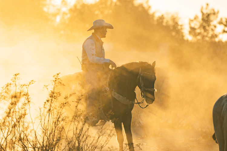 Man riding horse with sun shining through the dust