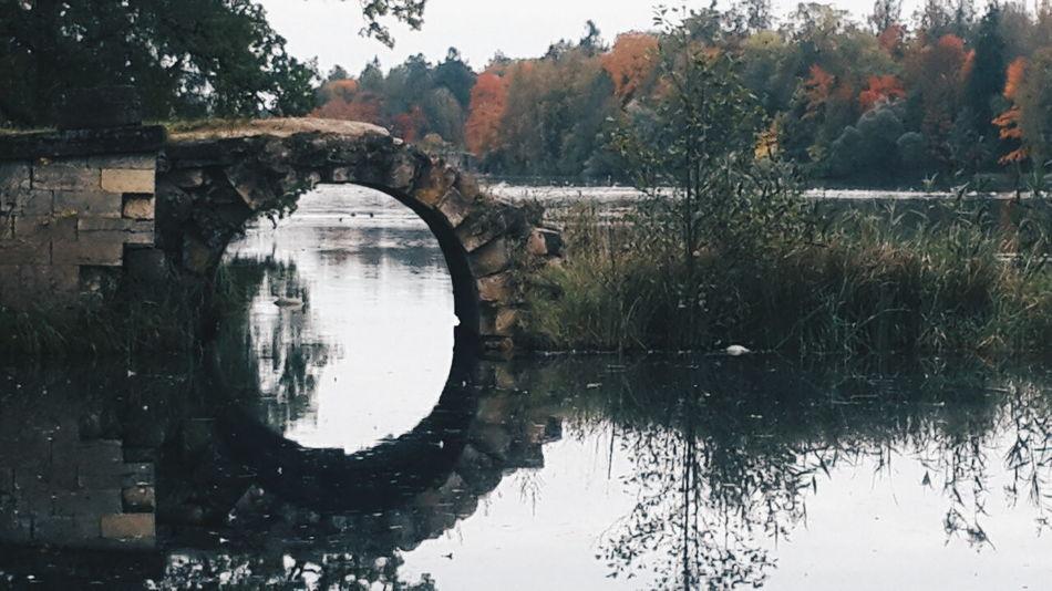 Gatchina Park Park Nature Autumn Saint Petersburg Water Autumnal Mood Autumnalias Ownphotography Soul