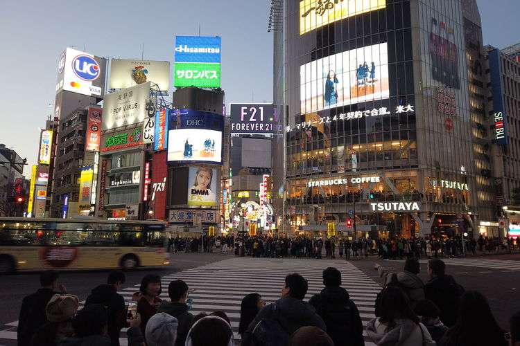 Japan Tokyo Street Urban People Shibuya Travel Destinations Evening Night Busy Street Shibuya Crossing Shibuyacrossing Landmark Nightlife Neon Travel Japan Travel Japan Trip  City Architecture Group Of People Building Exterior Real People Large Group Of People Built Structure City Life Crowd Transportation Road Advertisement Men Sign Text Adult Crossing Lifestyles Outdoors