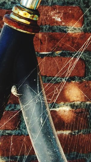 Spider Web Bike