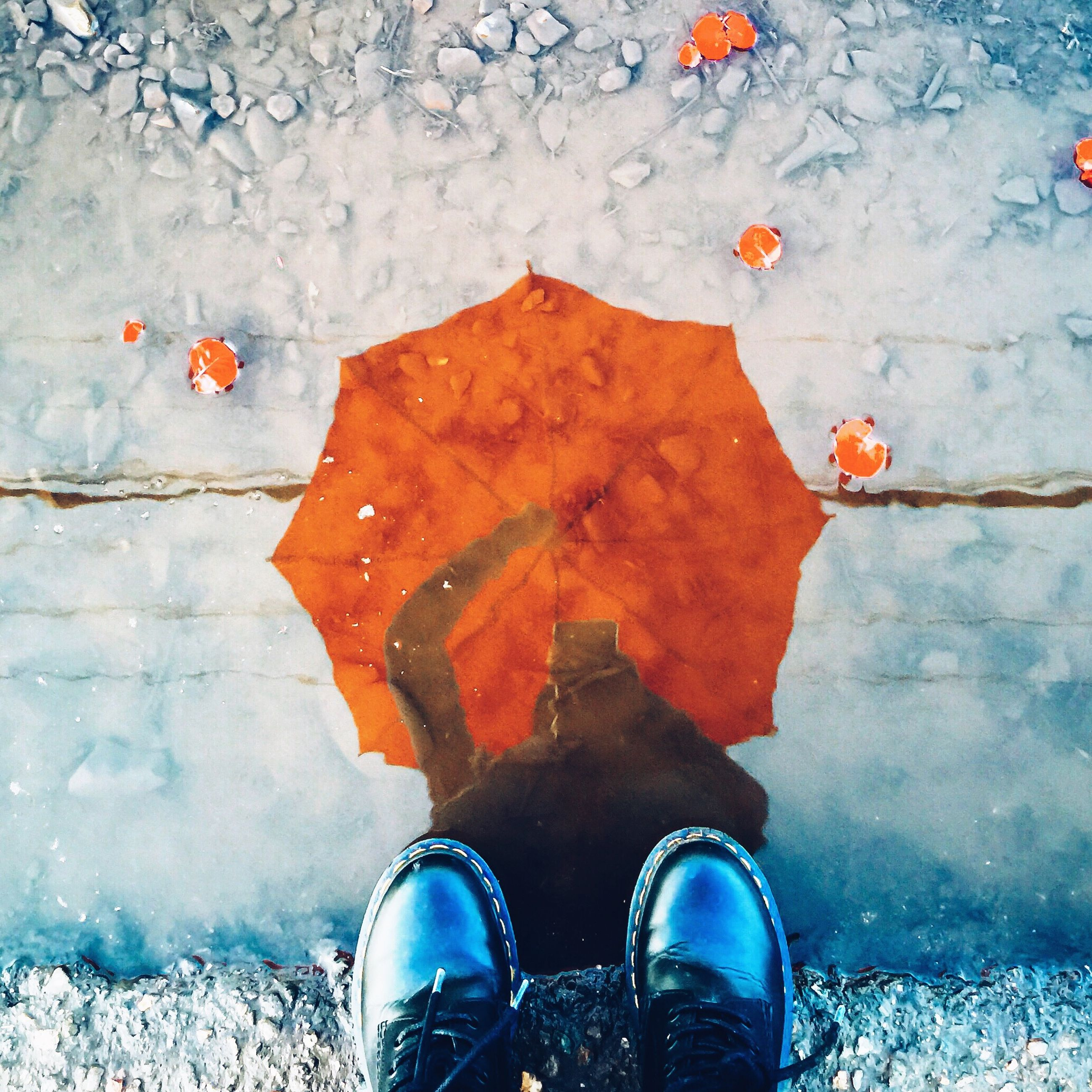 low section, shoe, high angle view, autumn, leaf, season, street, personal perspective, change, person, one person, directly above, footwear, wet, water, puddle, fallen, reflection, dry, leaves
