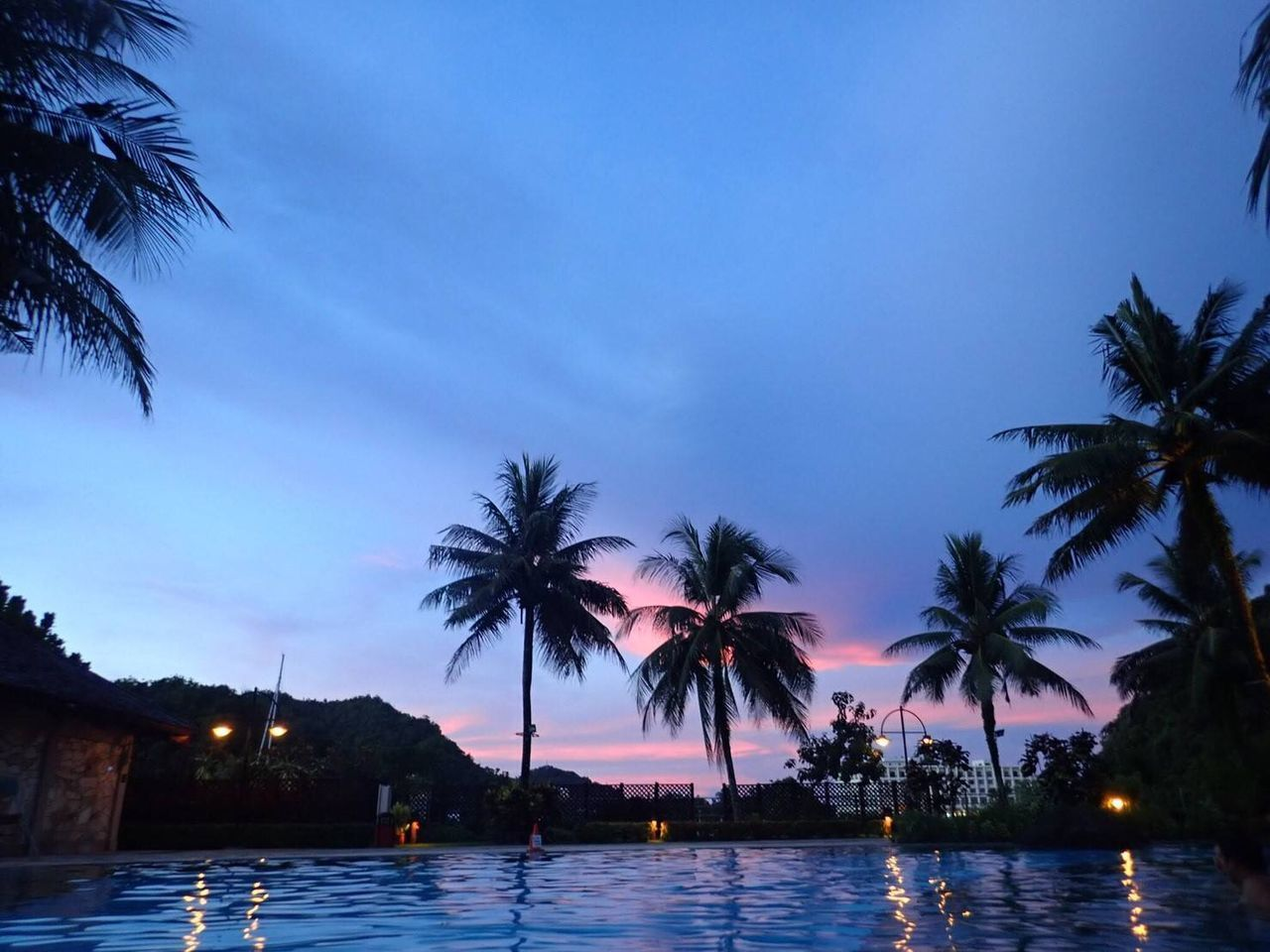 tree, palm tree, water, tropical climate, sky, plant, illuminated, nature, no people, dusk, cloud - sky, sea, beauty in nature, pool, scenics - nature, tranquil scene, sunset, architecture, swimming pool, outdoors, coconut palm tree, tropical tree