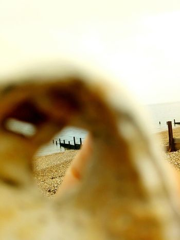 The sea from a different point of view Sea Herne Bay Kent Sea Life Beach Nature Photography HerneBay The Week On EyeEm