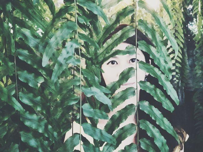 Portrait Leaf