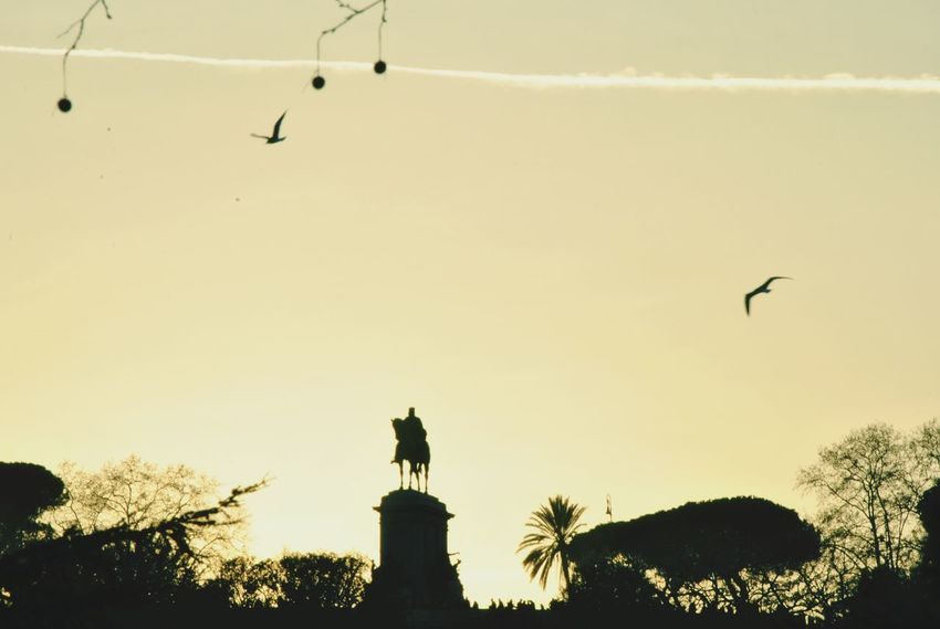 The horsemen. Travel Destinations Rome Travel Moving Around Rome Bird Tree Flying City Statue Silhouette King - Royal Person Sunset Sky Stork Fanned Out