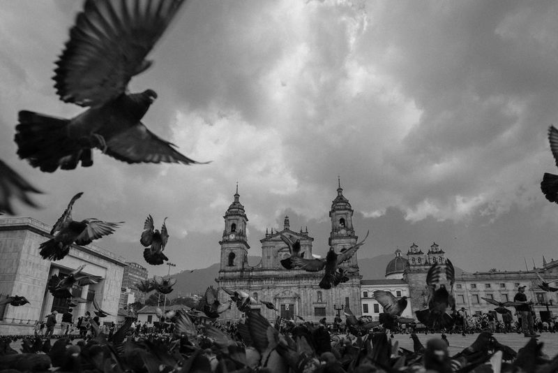 Animals B&w Bird Black And White City Cloud - Sky Crowd Flying Landmark Outdoors Pigeon Plaza Bolivar Public Places Sky Streetphotography Travel Travel Destinations Urban Wings Low Angle View Different Perspective Point Of View