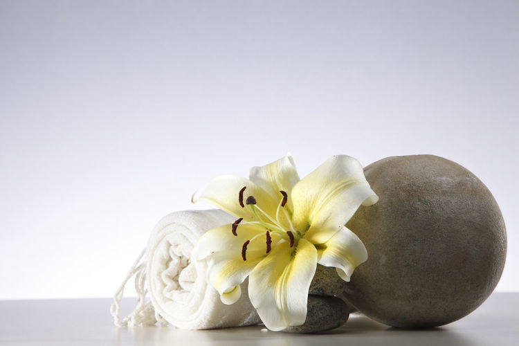 yellow flower lily on the round vase with towel Flower Flowering Plant Freshness Plant Close-up Lily Lily Flower Floral Petal Nature Summer Blossom White Spring Decoration Color Flora Blooming Bright Bouquet Leaf Green Bud Single Object Pretty Elégance Towel Round Stone Pebble Zen Beauty In Nature Indoors  Flower Head Studio Shot No People Vase Hygiene Massage White Background Copy Space Still Life Vulnerability