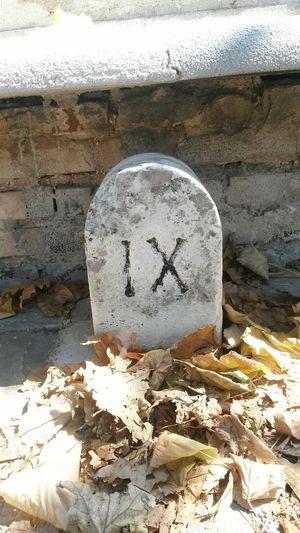 Numeri romani - Roman numerals Numeri RomanNumerals Tolentino Strada Street Indicazioni Indication Taking Photos EyeEm Best Shots Walking In Tolentino