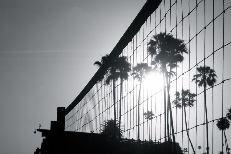 Low angle view of beach volleyball net and silhouette palm trees against clear sky