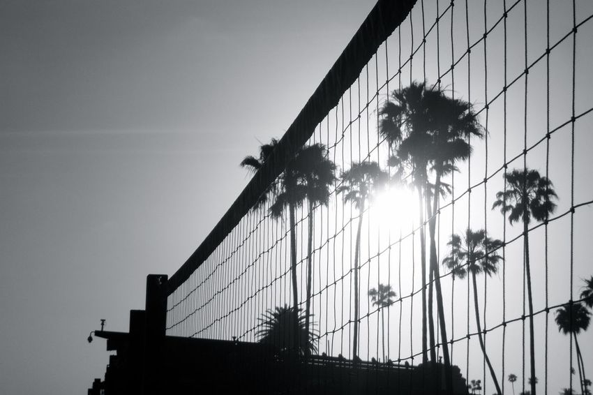 California Beachphotography Beach Volleyball Palm Trees Sunset Black And White Smart Simplicity